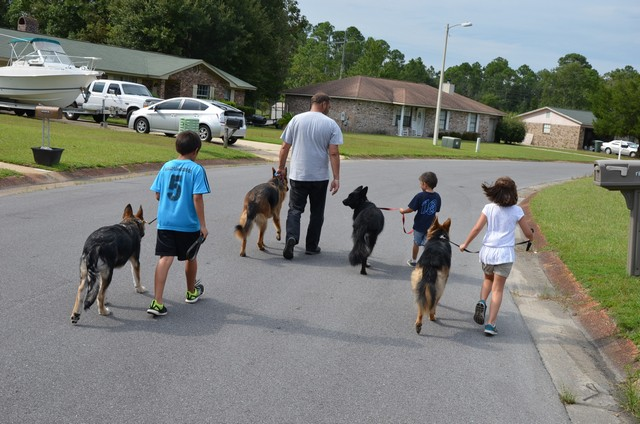 pack walk with kids